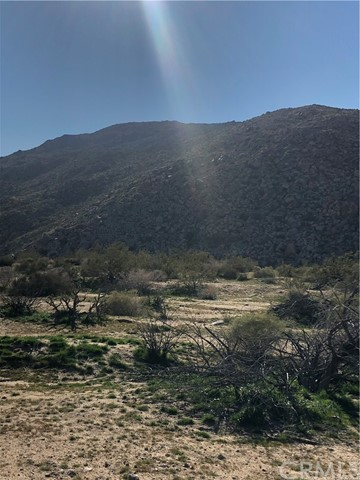 0 border, Joshua Tree, CA 92252
