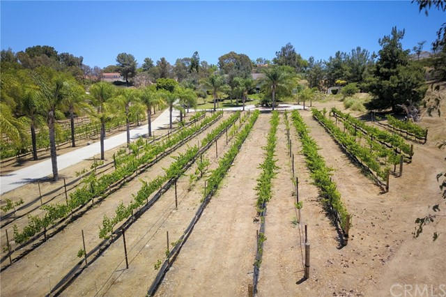 41540 Avenida Rancho, Temecula, CA 92592 Photo 60