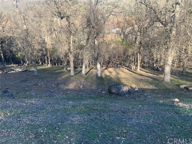 19450 Donkey Hill Rd, Hidden Valley Lake, CA 95467 Photo 4