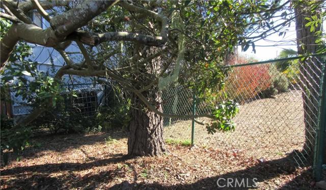 2985 Wood Dr, Cambria, CA 93428 Photo 53
