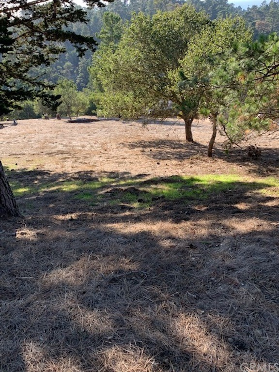 0 Richard Av, Cambria, CA 93428 Photo 6