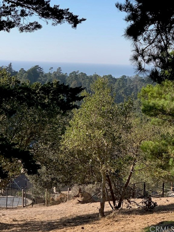 0 Richard Av, Cambria, CA 93428 Photo 1