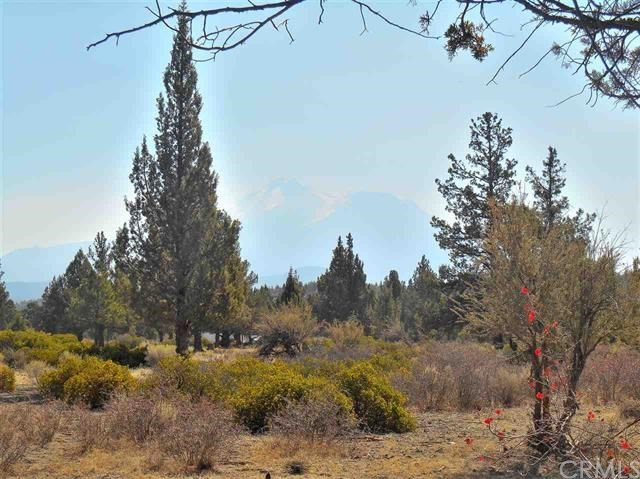 211 Archer Road, Weed, CA 96094