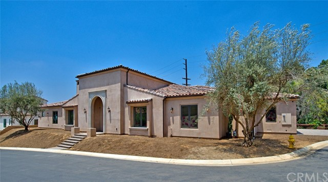 Single story custom home on level lot with view of Brea Hills! PERFECT time to buy a beautiful piece of property in Brea. This model offers 4 spacious bedrooms with 4.5 bathrooms on approximately 4596 square feet. Large lot of approximately 20,000 square feet. This custom home includes a Gourmet kitchen with custom counter tops and stainless steel appliances, built-in refrigerator. Living room and Family room all have custom cast fireplace surrounds. Additional features include a  large dining room, Library, recessed lighting, wood floors throughout, inside laundry room, raised panel doors, an alarm system, 3-car finished garage with custom wood garage doors. The exterior of the house will be smooth stucco (hand finished), post tension slabs, custom wood front door, custom rain gutters, front yard landscaping, automatic sprinkler system, yard drainage system with a custom tile roof. All on a private, gated cul-de-sac street.