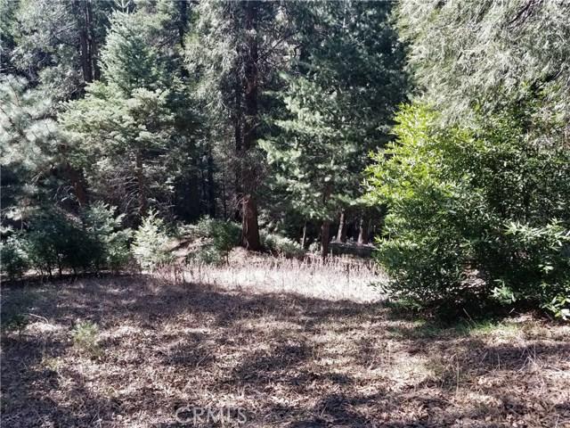 0 Burnt Mill Canyon, Cedarpines Park, CA 92322