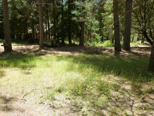 16268 Sorrel Trail,Helendale,CA 92342, USA