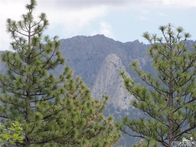 25324 Scenic View Drive, Idyllwild, CA 92549