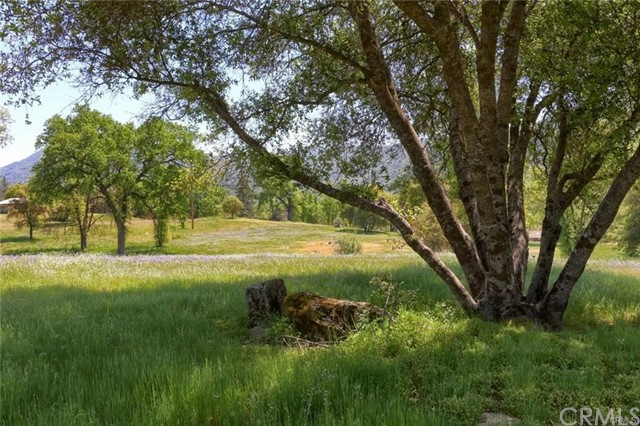 0 Shandee Lane, Ahwahnee, CA 93601