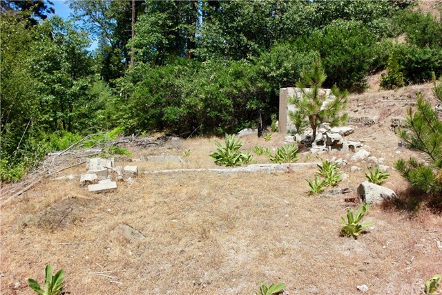 29969 Hook Creek Road, Cedar Glen, CA 92321
