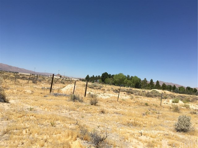 33459 Rabbit Springs Rd, Lucerne Valley, CA 92356 Photo 3