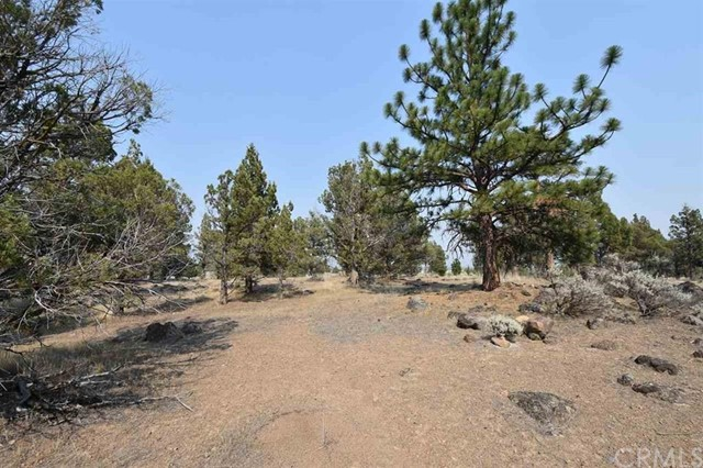 0 Lot 110 Wildhorse Road, Weed, CA 96094