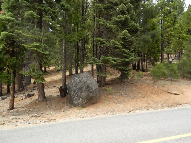 315 Top Of The West Drive, Lake Almanor, CA 96020