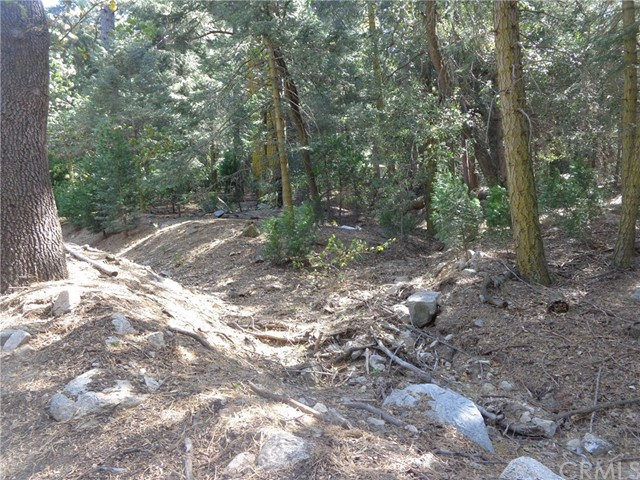 0 Sawpit Creek, Cedarpines Park, CA 92322