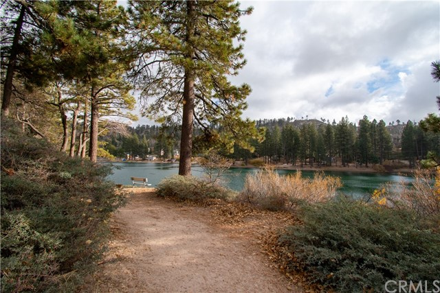 32274 N Green Valley Lake Rd, Green Valley Lake, CA 92382 Photo 47