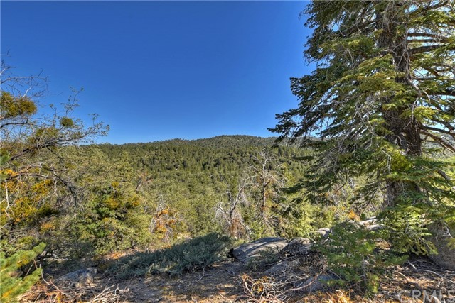 33444 Music Camp Rd, Arrowbear, CA 92382 Photo 26