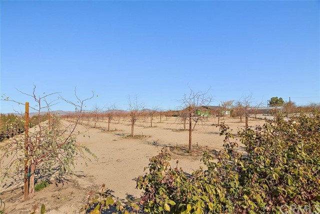 34738 Old Woman Springs Rd, Lucerne Valley, CA 92356 Photo 41