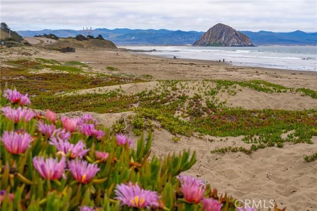 3263 Ocean Bl, Cayucos, CA 93430 Photo 23