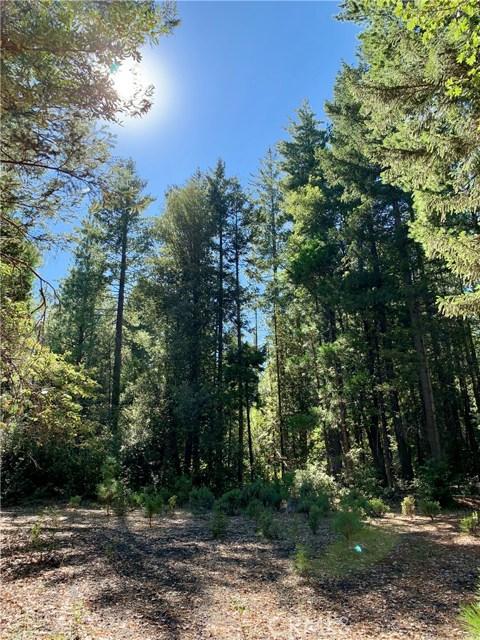 0 Bald Rock Road, Berry Creek, CA 95916