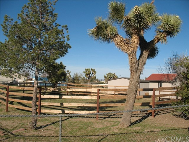10791 Columbine Rd, Oak Hills, CA 92344 Photo 19