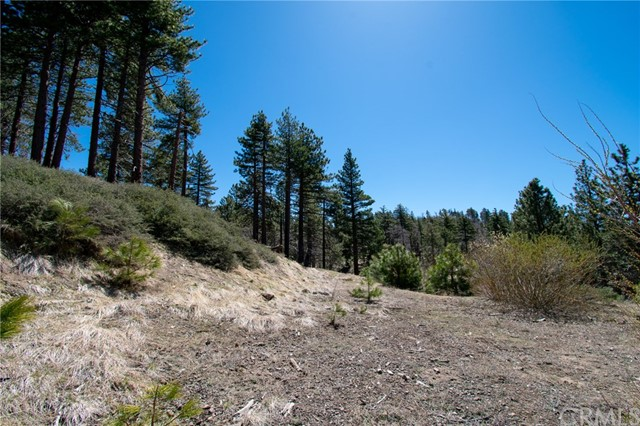 32274 N Green Valley Lake Rd, Green Valley Lake, CA 92382 Photo 19