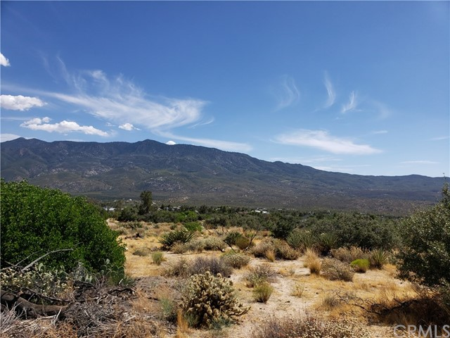 0 Alpine Drive, Mountain Center, CA 92561