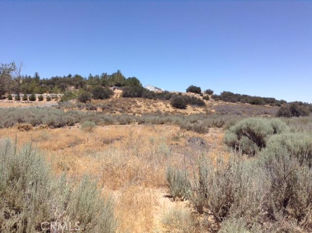 0 Forestry Rd, Oak Hills, CA 92344 Photo 2