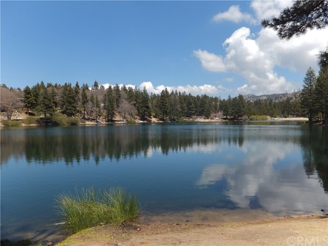 0 Fern Dr, Green Valley Lake, CA 92341 Photo 6
