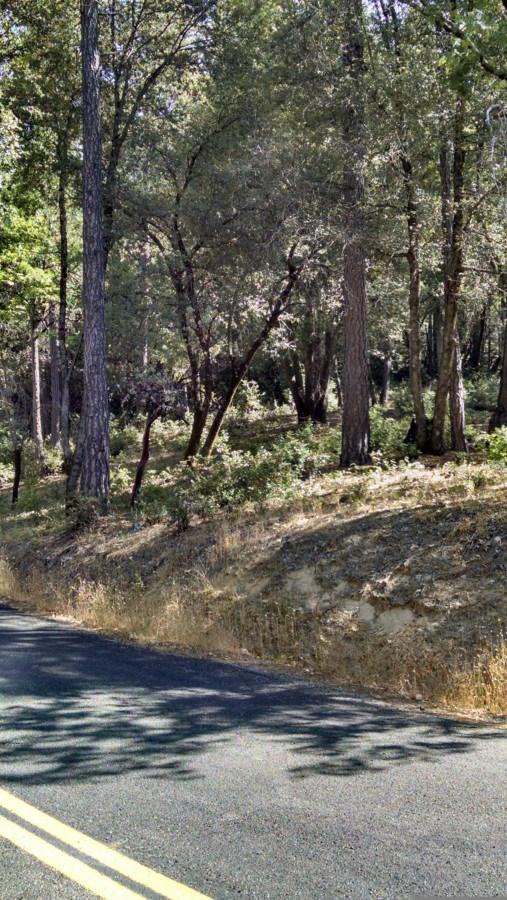 0 Zink Road, Berry Creek, CA 95916