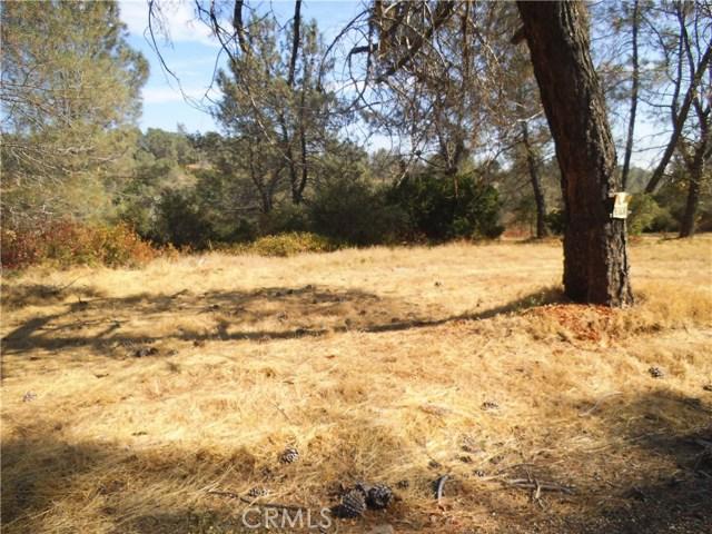 0 S Wayland Road, Paradise, CA 95969