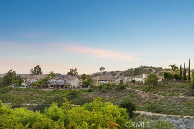 48. 449 Brea Hills Avenue Brea, CA 92823