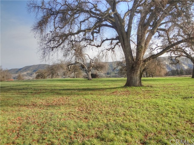 2175 Point Land Farms Drive, Nice, CA 95464