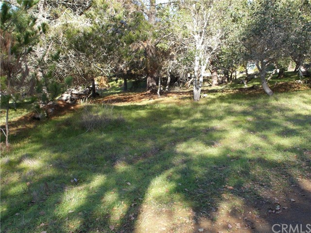 2307009 Tully, Cambria, CA  Photo 1