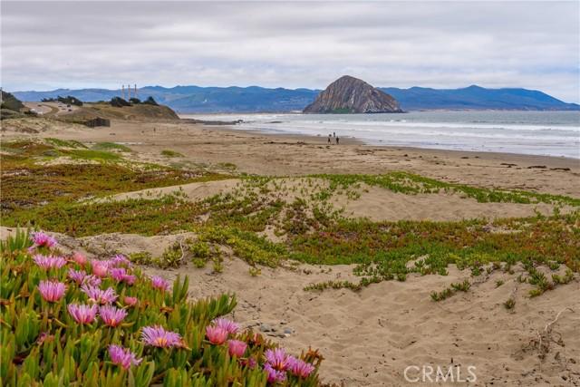 3263 Ocean Bl, Cayucos, CA 93430 Photo 22