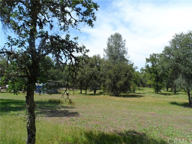 1329 Swedes Flat Road, Forbestown, CA 95914