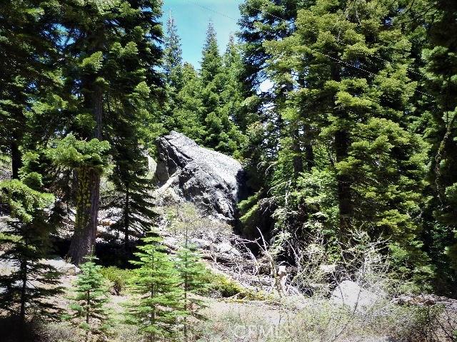 0 Highway 49, Sierra City, CA 96124