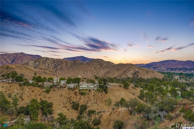 12017 Mountain View Trail, Kagel Canyon, CA 91342 Photo 75