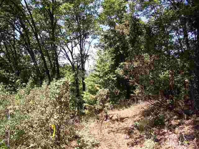 0 leprechaun Lane, Berry Creek, CA 95916