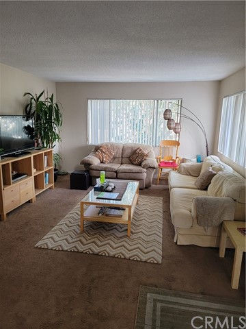 Living room in one of the back units