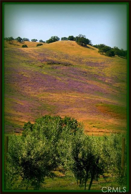 77955 Hog Canyon Rd, San Miguel, CA 93451 Photo 36