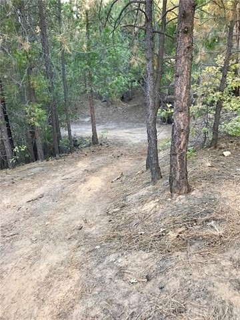 0 Pine Cone, North Fork, CA 93643 Photo 12
