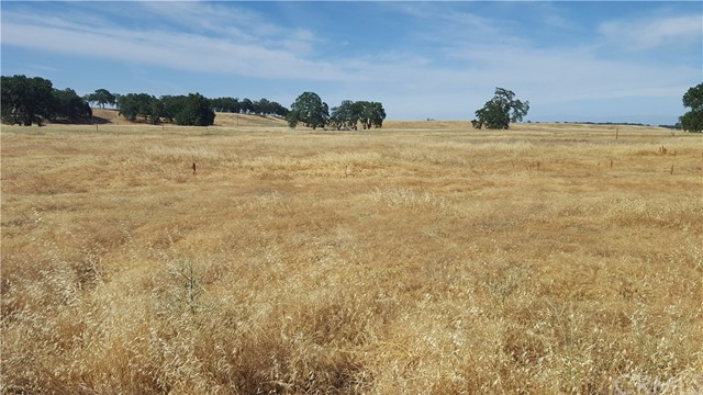 0 RENEE WAY, Flournoy, CA 96029