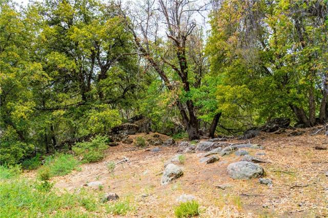 27. 33462 Conifer Rd Palomar Mountain, CA 92060