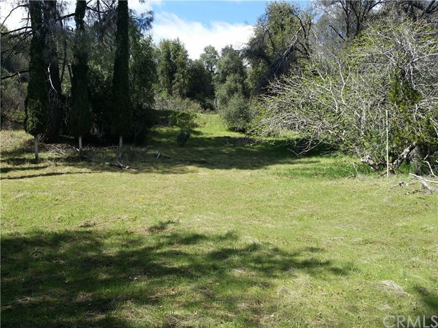5758003 Lilac, Oakhurst, CA 93644