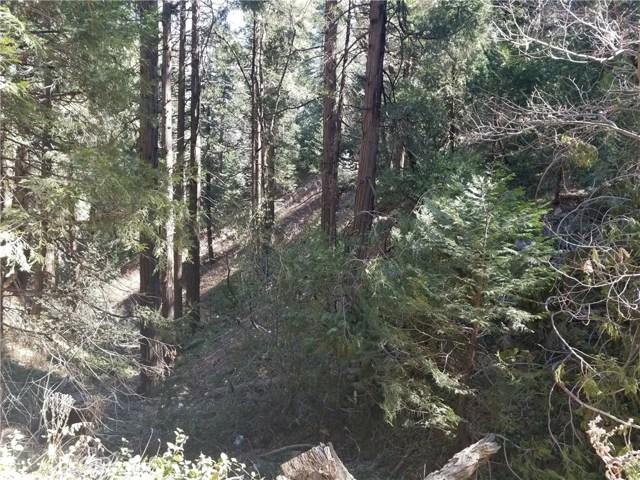 0 Alder Creek Road, Cedarpines Park, CA 92322