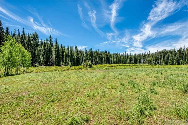 0 Forest Rd., Long Barn, CA 95335