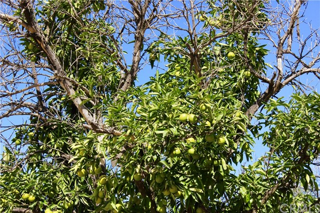 42105 Camino Tiempo, Temecula, CA 92590 Photo 35