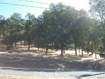 19758 Park Hill Road, Hidden Valley Lake, CA 95467
