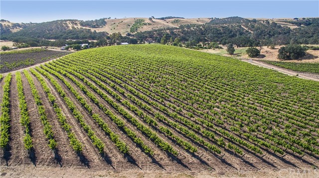 Property for sale at 6808 Ea Hwy 41, Templeton,  California 93465