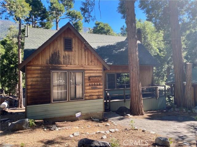40958 Oak Drive, Forest Falls, CA 92339