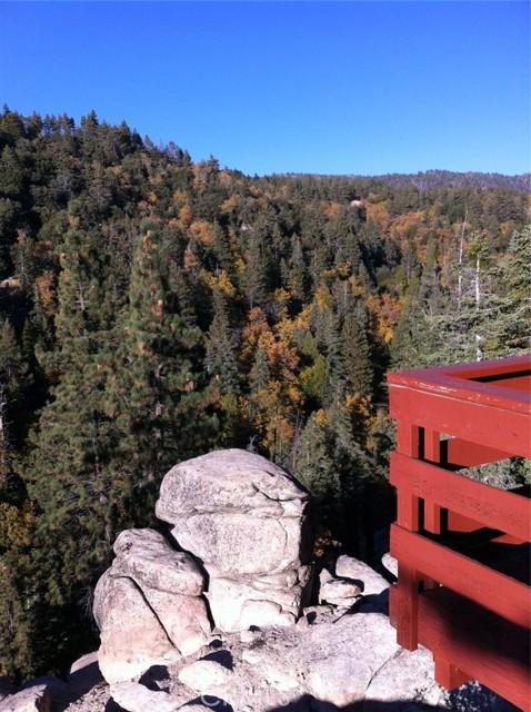 33006 Falling Leaf Ln, Arrowbear, CA 92382 Photo 37